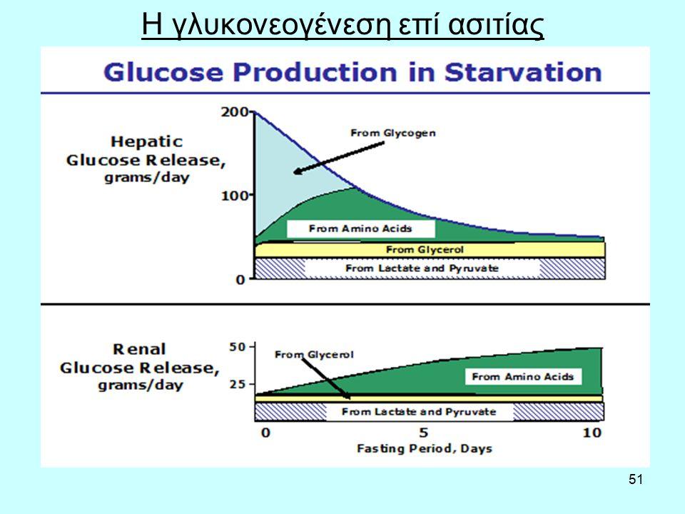 51 Η γλυκονεογένεση επί ασιτίας