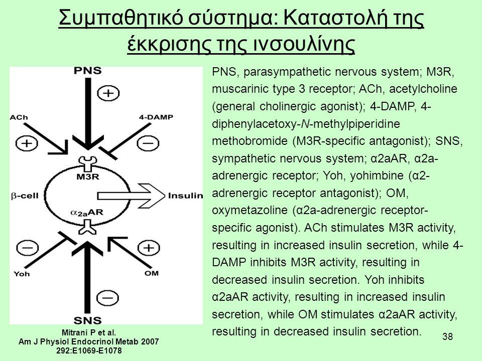 38 Συμπαθητικό σύστημα: Καταστολή της έκκρισης της ινσουλίνης Mitrani P et al.