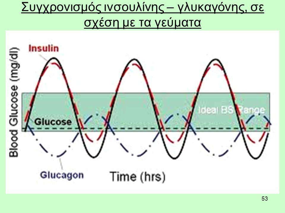 53 Συγχρονισμός ινσουλίνης – γλυκαγόνης, σε σχέση με τα γεύματα