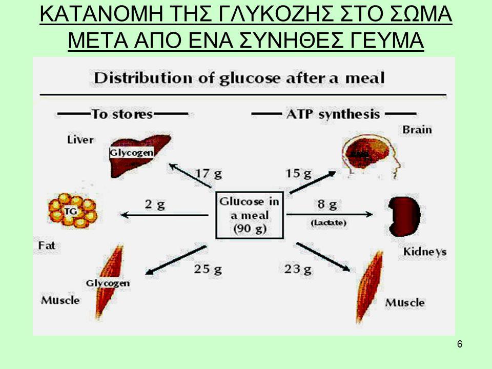 47 ΔΡΑΣΗ ΤΗΣ ΓΛΥΚΑΓΟΝΗΣ Η γλυκαγόνη είναι καταβολική ορμόνη και τα ερεθίσματα για την έκκριση της είναι η πείνα, η αύξηση της ποσότητας των αμινοξέων στο αίμα και η μείωση της ποσότητας ελεύθερων λιπαρών οξέων (συνδέονται στην αλβουμίνη) στο αίμα.