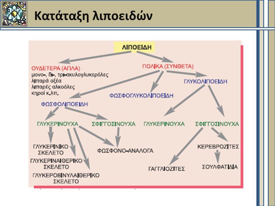 Ουδέτερα λιποειδή (1)  Τερπένια - Στεροειδή