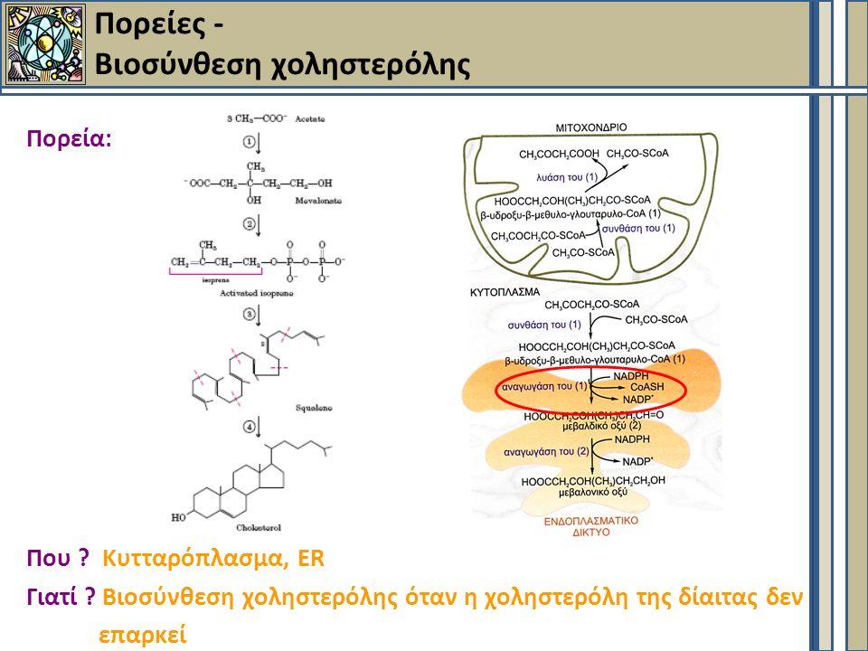 Πορείες - Βιοσύνθεση χοληστερόλης Πορεία: Που . Κυτταρόπλασμα, ER Γιατί .
