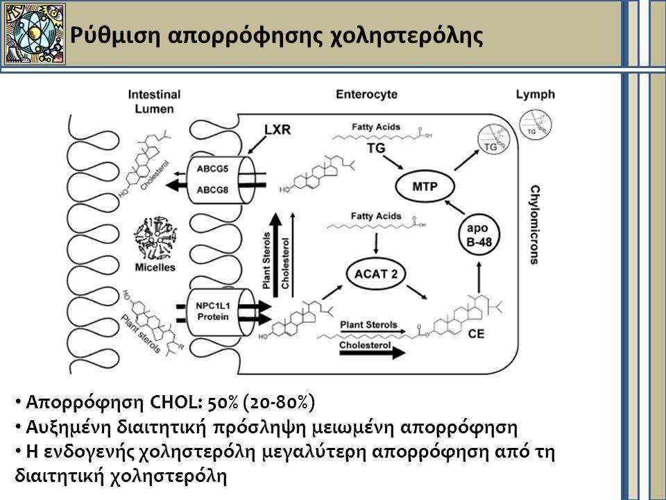 Ρύθμιση απορρόφησης χοληστερόλης Απορρόφηση CHOL: 50% (20-80%) Αυξημένη διαιτητική πρόσληψη μειωμένη απορρόφηση Η ενδογενής χοληστερόλη μεγαλύτερη απορρόφηση από τη διαιτητική χοληστερόλη