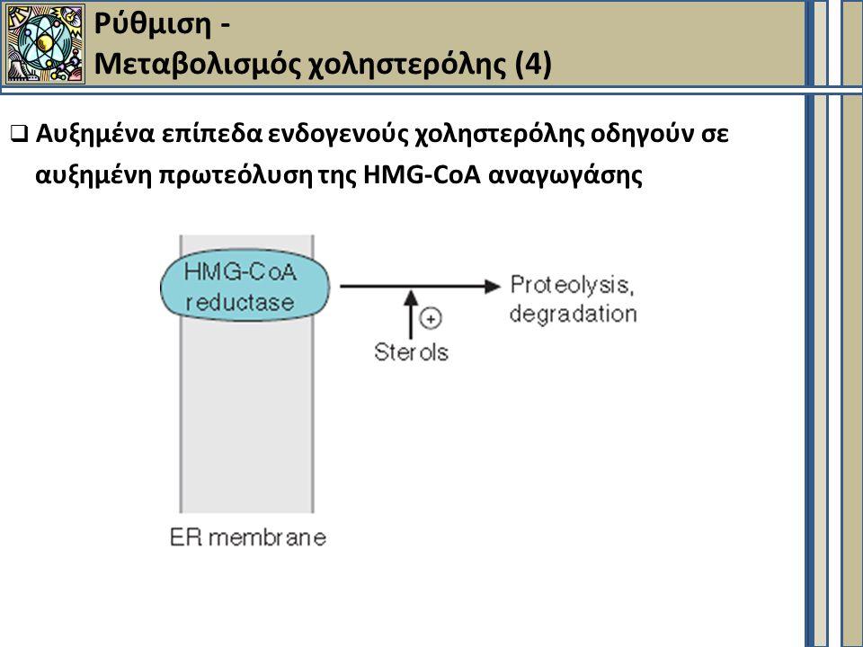 Ρύθμιση - Μεταβολισμός χοληστερόλης (4)  Αυξημένα επίπεδα ενδογενούς χοληστερόλης οδηγούν σε αυξημένη πρωτεόλυση της HMG-CoA αναγωγάσης
