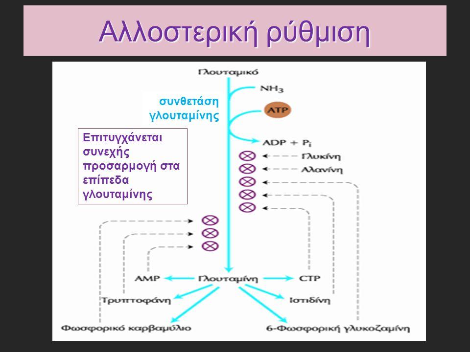 Αλλοστερική ρύθμιση Επιτυγχάνεται συνεχής προσαρμογή στα επίπεδα γλουταμίνης συνθετάση γλουταμίνης