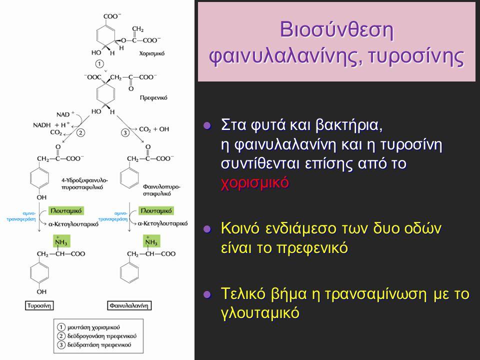 Βιοσύνθεση φαινυλαλανίνης, τυροσίνης Στα φυτά και βακτήρια, η φαινυλαλανίνη και η τυροσίνη συντίθενται επίσης από το χορισμικό Στα φυτά και βακτήρια, η φαινυλαλανίνη και η τυροσίνη συντίθενται επίσης από το χορισμικό Κοινό ενδιάμεσο των δυο οδών είναι το πρεφενικό Κοινό ενδιάμεσο των δυο οδών είναι το πρεφενικό Τελικό βήμα η τρανσαμίνωση με το γλουταμικό Τελικό βήμα η τρανσαμίνωση με το γλουταμικό