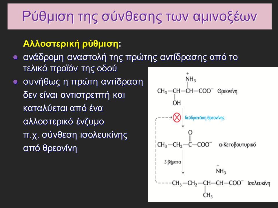 Ρύθμιση της σύνθεσης των αμινοξέων Αλλοστερική ρύθμιση: ανάδρομη αναστολή της πρώτης αντίδρασης από το τελικό προϊόν της οδού ανάδρομη αναστολή της πρώτης αντίδρασης από το τελικό προϊόν της οδού συνήθως η πρώτη αντίδραση συνήθως η πρώτη αντίδραση δεν είναι αντιστρεπτή και καταλύεται από ένα αλλοστερικό ένζυμο π.χ.