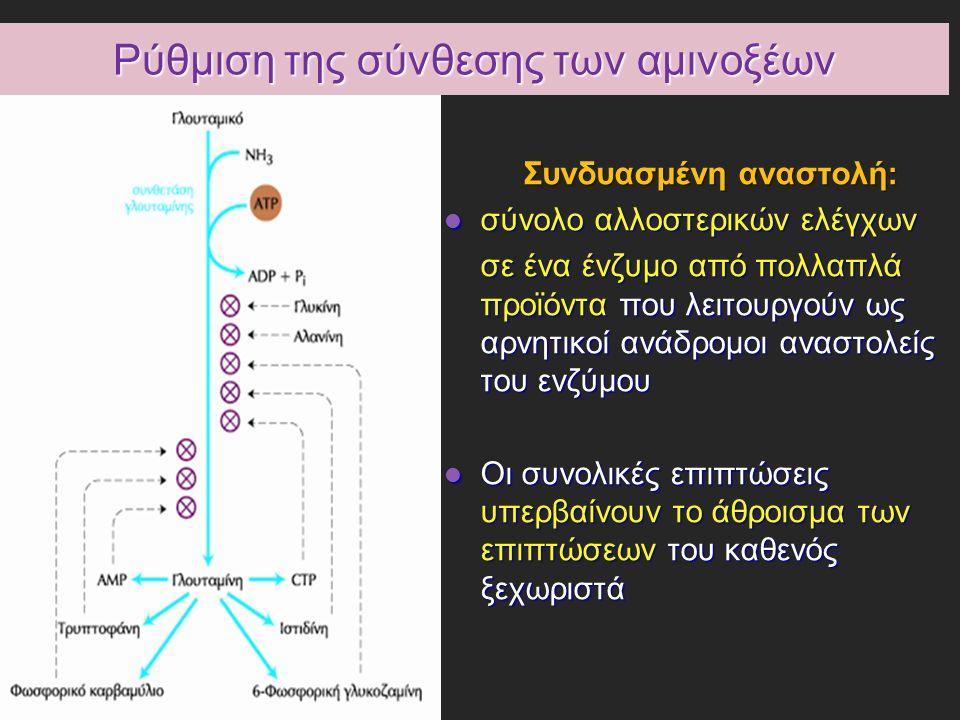 Ρύθμιση της σύνθεσης των αμινοξέων Συνδυασμένη αναστολή: σύνολο αλλοστερικών ελέγχων σύνολο αλλοστερικών ελέγχων σε ένα ένζυμο από πολλαπλά προϊόντα που λειτουργούν ως αρνητικοί ανάδρομοι αναστολείς του ενζύμου Οι συνολικές επιπτώσεις υπερβαίνουν το άθροισμα των επιπτώσεων του καθενός ξεχωριστά Οι συνολικές επιπτώσεις υπερβαίνουν το άθροισμα των επιπτώσεων του καθενός ξεχωριστά
