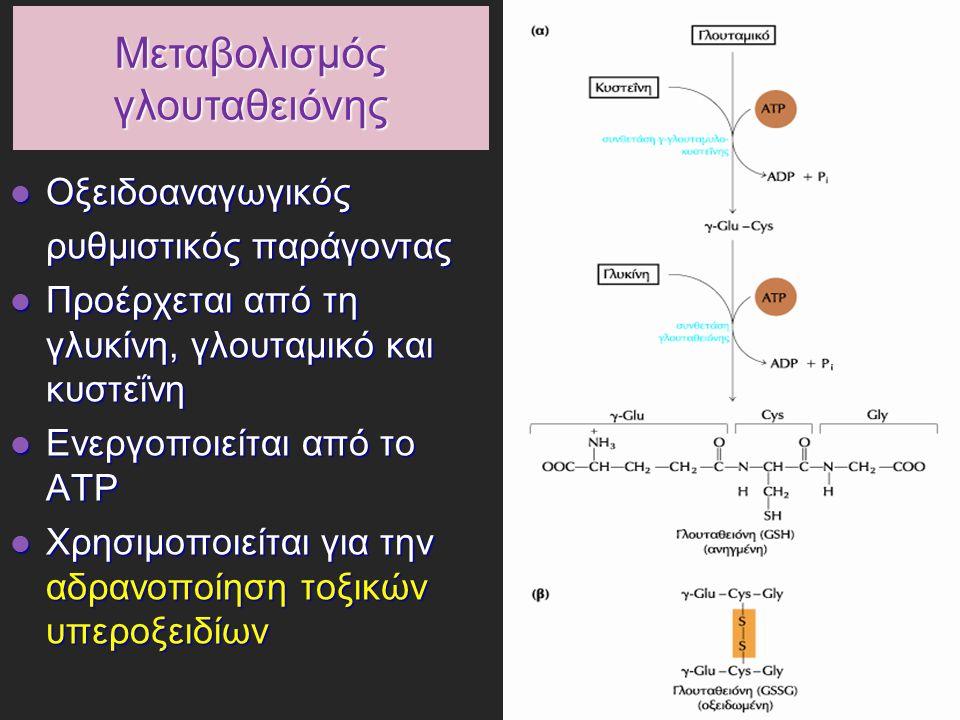 Μεταβολισμός γλουταθειόνης Οξειδοαναγωγικός Οξειδοαναγωγικός ρυθμιστικός παράγοντας Προέρχεται από τη γλυκίνη, γλουταμικό και κυστεΐνη Προέρχεται από τη γλυκίνη, γλουταμικό και κυστεΐνη Ενεργοποιείται από το ΑΤΡ Ενεργοποιείται από το ΑΤΡ Χρησιμοποιείται για την αδρανοποίηση τοξικών υπεροξειδίων Χρησιμοποιείται για την αδρανοποίηση τοξικών υπεροξειδίων