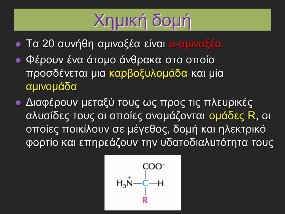 Χημική δομή Τα 20 συνήθη αμινοξέα είναι α-αμινοξέα Τα 20 συνήθη αμινοξέα είναι α-αμινοξέα Φέρουν ένα άτομο άνθρακα στο οποίο προσδένεται μια καρβοξυλομάδα και μία αμινομάδα Φέρουν ένα άτομο άνθρακα στο οποίο προσδένεται μια καρβοξυλομάδα και μία αμινομάδα Διαφέρουν μεταξύ τους ως προς τις πλευρικές αλυσίδες τους οι οποίες ονομάζονται ομάδες R, οι οποίες ποικίλουν σε μέγεθος, δομή και ηλεκτρικό φορτίο και επηρεάζουν την υδατοδιαλυτότητα τους Διαφέρουν μεταξύ τους ως προς τις πλευρικές αλυσίδες τους οι οποίες ονομάζονται ομάδες R, οι οποίες ποικίλουν σε μέγεθος, δομή και ηλεκτρικό φορτίο και επηρεάζουν την υδατοδιαλυτότητα τους
