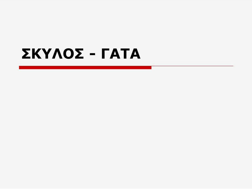 ΣΚΥΛΟΣ - ΓΑΤΑ