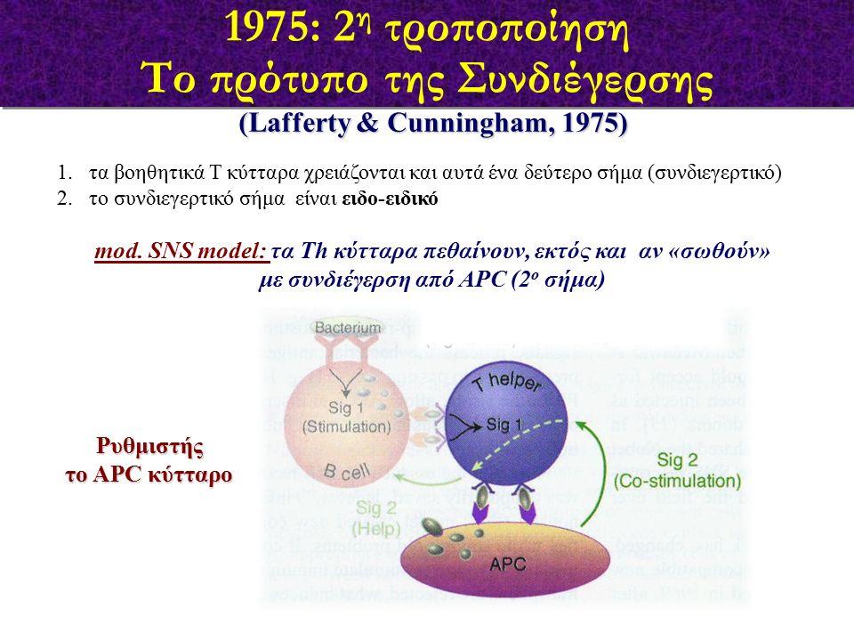 (Lafferty & Cunningham, 1975) 1.τα βοηθητικά Τ κύτταρα χρειάζονται και αυτά ένα δεύτερο σήμα (συνδιεγερτικό) 2.το συνδιεγερτικό σήμα είναι ειδο-ειδικό