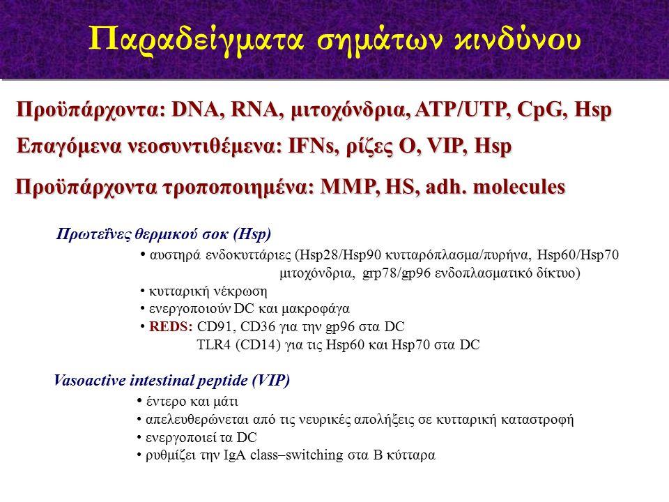 Προϋπάρχοντα: DNA, RNA, μιτοχόνδρια, ΑΤP/UTP, CpG, Hsp Πρωτεΐνες θερμικού σοκ (Hsp) αυστηρά ενδοκυττάριες (Hsp28/Hsp90 κυτταρόπλασμα/πυρήνα, Hsp60/Hsp70 μιτοχόνδρια, grp78/gp96 ενδοπλασματικό δίκτυο) κυτταρική νέκρωση ενεργοποιούν DC και μακροφάγα REDS: CD91, CD36 για την gp96 στα DC TLR4 (CD14) για τις Hsp60 και Hsp70 στα DC Παραδείγματα σημάτων κινδύνου Επαγόμενα νεοσυντιθέμενα: ΙFNs, ρίζες Ο, VIP, Ηsp Προϋπάρχοντα τροποποιημένα: ΜΜP, HS, adh.