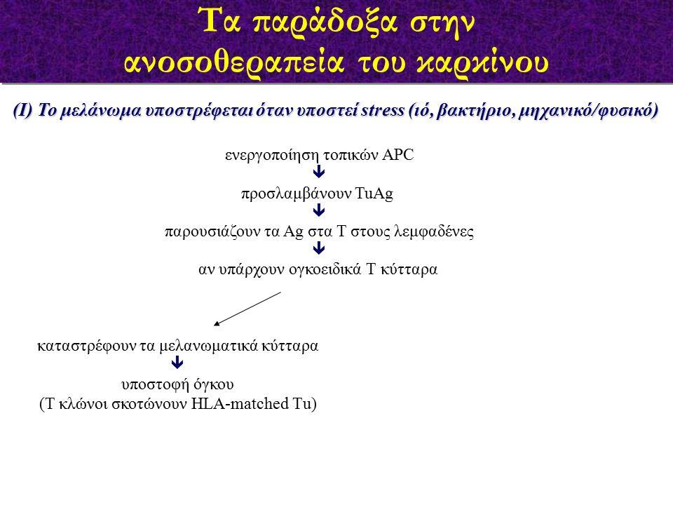 (Ι) Το μελάνωμα υποστρέφεται όταν υποστεί stress (ιό, βακτήριο, μηχανικό/φυσικό) ενεργοποίηση τοπικών APC  προσλαμβάνουν TuAg  παρουσιάζουν τα Αg στα Τ στους λεμφαδένες  αν υπάρχουν ογκοειδικά Τ κύτταρα καταστρέφουν τα μελανωματικά κύτταρα  υποστοφή όγκου (Τ κλώνοι σκοτώνουν HLA-matched Τu) Τα παράδοξα στην ανοσοθεραπεία του καρκίνου Τα παράδοξα στην ανοσοθεραπεία του καρκίνου