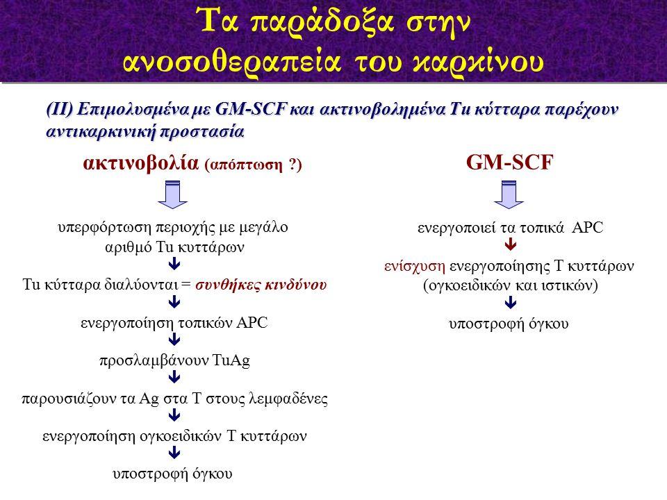 (ΙΙ) Επιμολυσμένα με GM-SCF και ακτινοβολημένα Τu κύτταρα παρέχουν αντικαρκινική προστασία υπερφόρτωση περιοχής με μεγάλο αριθμό Tu κυττάρων  Tu κύτταρα διαλύονται = συνθήκες κινδύνου  ενεργοποίηση τοπικών APC  προσλαμβάνουν TuAg  παρουσιάζουν τα Αg στα Τ στους λεμφαδένες  ενεργοποίηση ογκοειδικών Τ κυττάρων  υποστροφή όγκου ακτινοβολία (απόπτωση ?) GM-SCF ενεργοποιεί τα τοπικά APC  ενίσχυση ενεργοποίησης Τ κυττάρων (ογκοειδικών και ιστικών)  υποστροφή όγκου Τα παράδοξα στην ανοσοθεραπεία του καρκίνου Τα παράδοξα στην ανοσοθεραπεία του καρκίνου