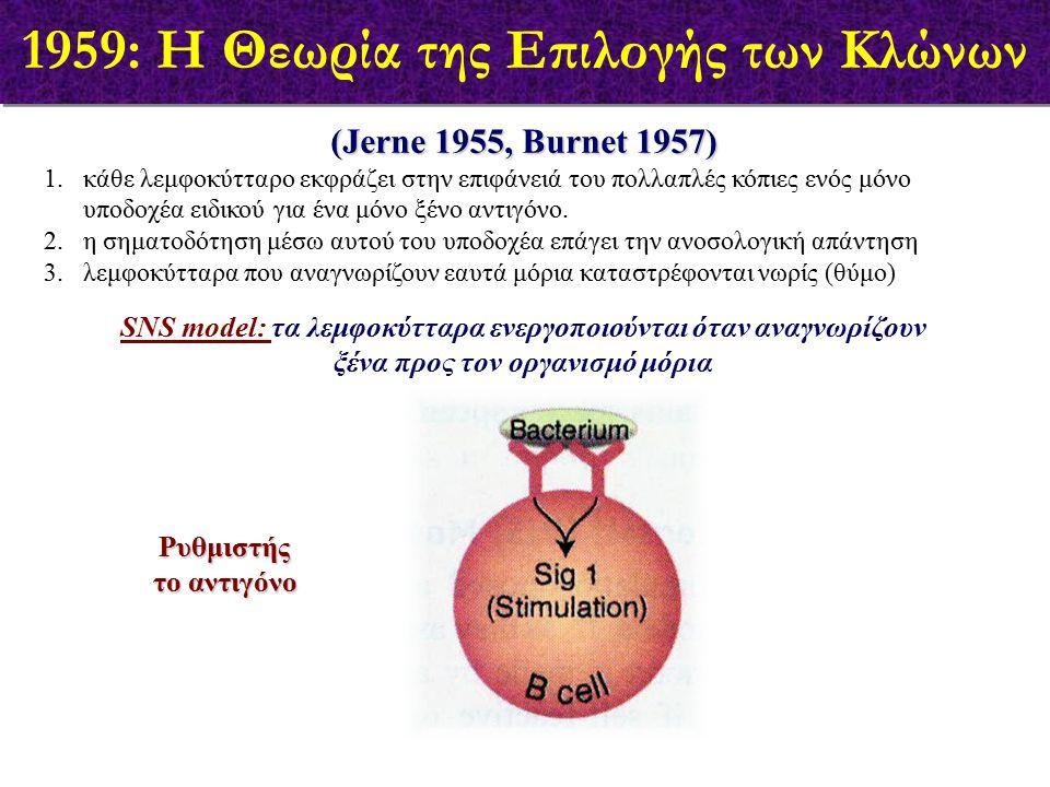 (Jerne 1955, Burnet 1957) 1.κάθε λεμφοκύτταρο εκφράζει στην επιφάνειά του πολλαπλές κόπιες ενός μόνο υποδοχέα ειδικού για ένα μόνο ξένο αντιγόνο. 2.η