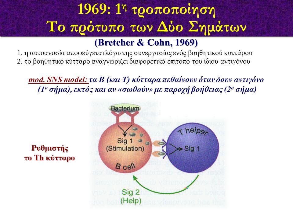 (Bretcher & Cohn, 1969) 1. η αυτοανοσία αποφεύγεται λόγω της συνεργασίας ενός βοηθητικού κυττάρου 2. το βοηθητικό κύτταρο αναγνωρίζει διαφορετικό επίτ
