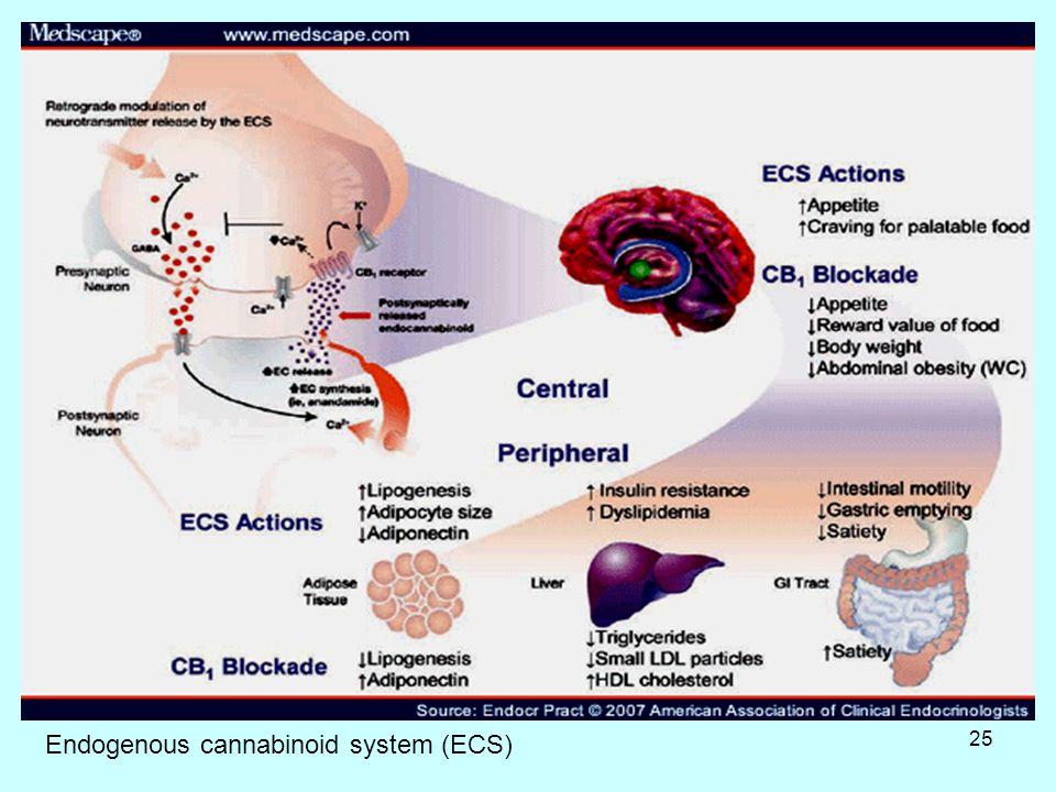 25 Εndogenous cannabinoid system (ECS)