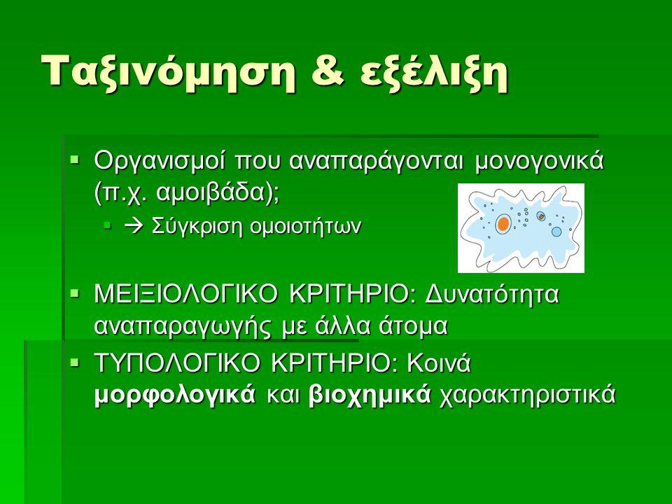  Οργανισμοί που αναπαράγονται μονογονικά (π.χ. αμοιβάδα);  Σύγκριση ομοιοτήτων  ΜΕΙΞΙΟΛΟΓΙΚΟ ΚΡΙΤΗΡΙΟ: Δυνατότητα αναπαραγωγής με άλλα άτομα  ΤΥΠ