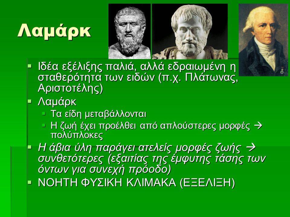 Λαμάρκ  Ιδέα εξέλιξης παλιά, αλλά εδραιωμένη η σταθερότητα των ειδών (π.χ. Πλάτωνας, Αριστοτέλης)  Λαμάρκ  Τα είδη μεταβάλλονται  Η ζωή έχει προέλ