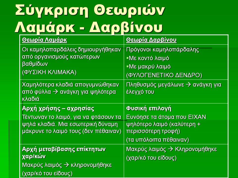 Σύγκριση Θεωριών Λαμάρκ - Δαρβίνου Θεωρία Λαμάρκ Θεωρία Δαρβίνου Οι καμηλοπαρδάλεις δημιουργήθηκαν από οργανισμούς κατώτερων βαθμίδων (ΦΥΣΙΚΗ ΚΛΙΜΑΚΑ)