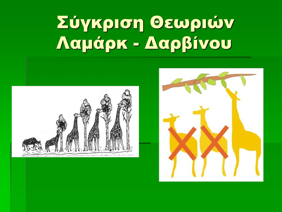 Σύγκριση Θεωριών Λαμάρκ - Δαρβίνου