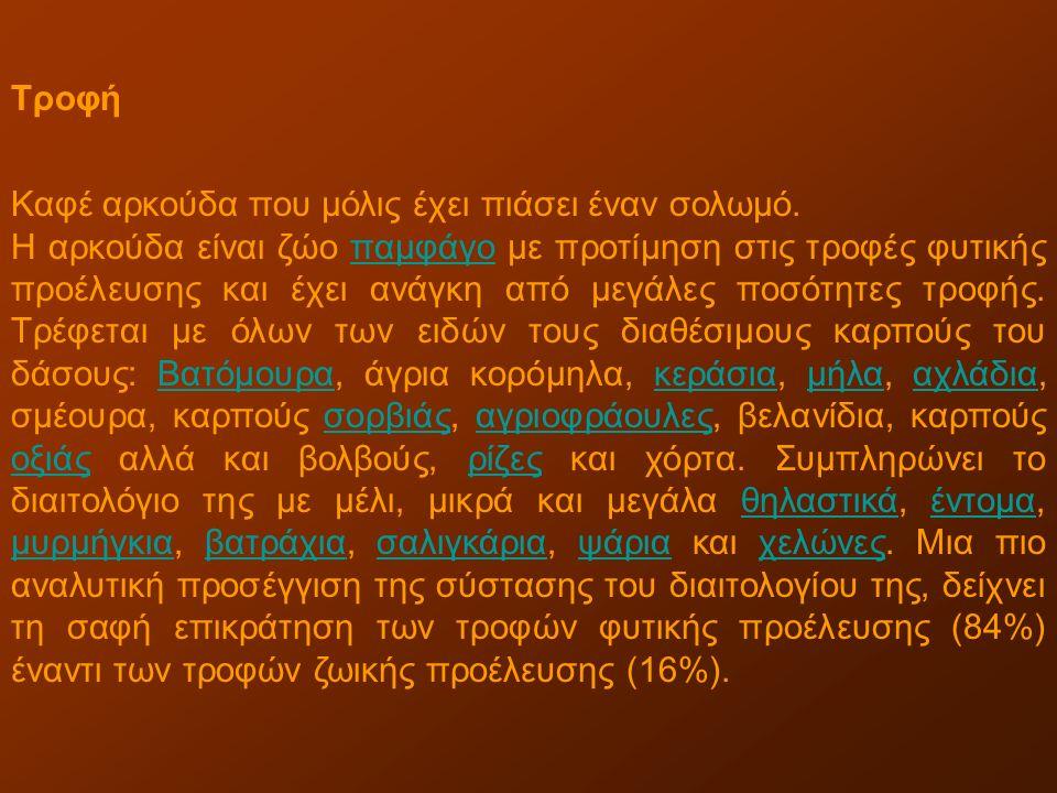 ΣΚΙΟΥΡΟΣ