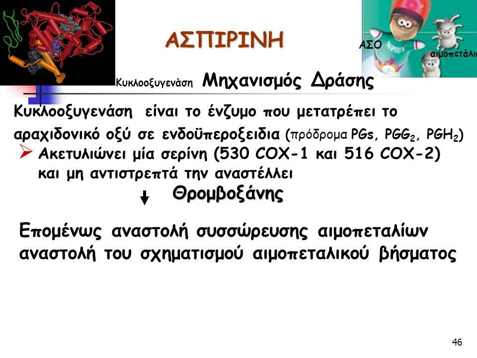 46 Κυκλοοξυγενάση είναι το ένζυμο που μετατρέπει το αραχιδονικό οξύ σε ενδοϋπεροξειδια (πρόδρομα PGs, PGG 2, PGH 2 )  Ακετυλιώνει μία σερίνη (530 COX