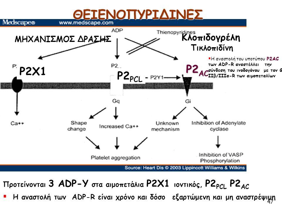 47 Προτείνονται 3 ADP-Υ στα αιμοπετάλια P2X1 ιοντικός, P2 PCL P2 AC ΘΕΙΕΝΟΠΥΡΙΔΙΝΕΣ ΜΗΧΑΝΙΣΜΟΣ ΔΡΑΣΗΣ Κλοπιδογρέλη Τικλοπιδίνη P2X1 P2 PCL P2 AC P2AC  Η αναστολή του υποτύπου P2AC των ADP-R αναστέλλει την σύνδεση του ινοδογόνου με τον GP IIβ/IIIα-R των αιμοπεταλίων  Η αναστολή των ADP-R είναι χρόνο και δόσο εξαρτώμενη και μη αναστρέψιμη