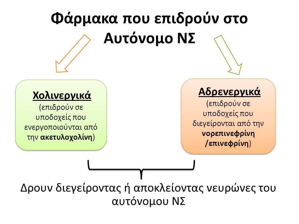 Φάρμακα που επιδρούν στο Αυτόνομο ΝΣ Δρουν διεγείροντας ή αποκλείοντας νευρώνες του αυτόνομου ΝΣ Χολινεργικά (επιδρούν σε υποδοχείς που ενεργοποιούνται από την ακετυλοχολίνη) Χολινεργικά (επιδρούν σε υποδοχείς που ενεργοποιούνται από την ακετυλοχολίνη) Αδρενεργικά (επιδρούν σε υποδοχείς που διεγείρονται από την νορεπινεφρίνη /επινεφρίνη) Αδρενεργικά (επιδρούν σε υποδοχείς που διεγείρονται από την νορεπινεφρίνη /επινεφρίνη)