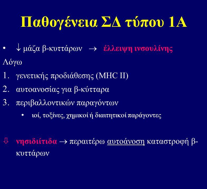 Παθογένεια ΣΔ τύπου 1Α  μάζα β-κυττάρων  έλλειψη ινσουλίνης Λόγω 1.