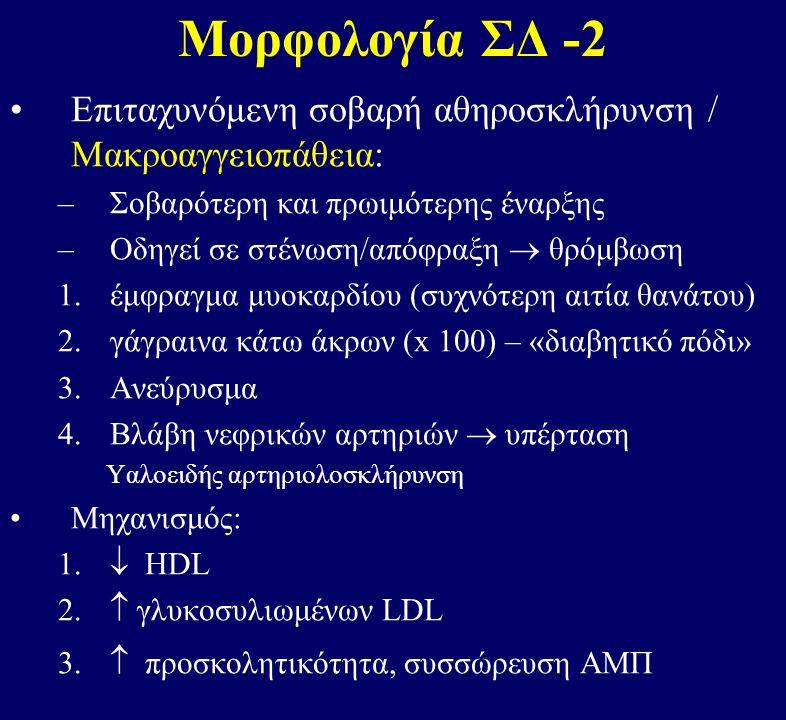 Μορφολογία ΣΔ -2 Επιταχυνόμενη σοβαρή αθηροσκλήρυνση / Μακροαγγειοπάθεια: –Σοβαρότερη και πρωιμότερης έναρξης –Οδηγεί σε στένωση/απόφραξη  θρόμβωση 1.έμφραγμα μυοκαρδίου (συχνότερη αιτία θανάτου) 2.γάγραινα κάτω άκρων (x 100) – «διαβητικό πόδι» 3.Ανεύρυσμα 4.Βλάβη νεφρικών αρτηριών  υπέρταση Υαλοειδής αρτηριολοσκλήρυνση Μηχανισμός: 1.
