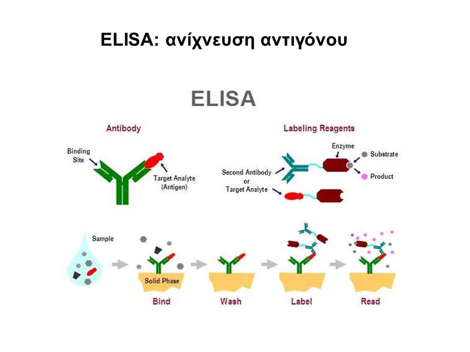 ELISA: ανίχνευση αντιγόνου