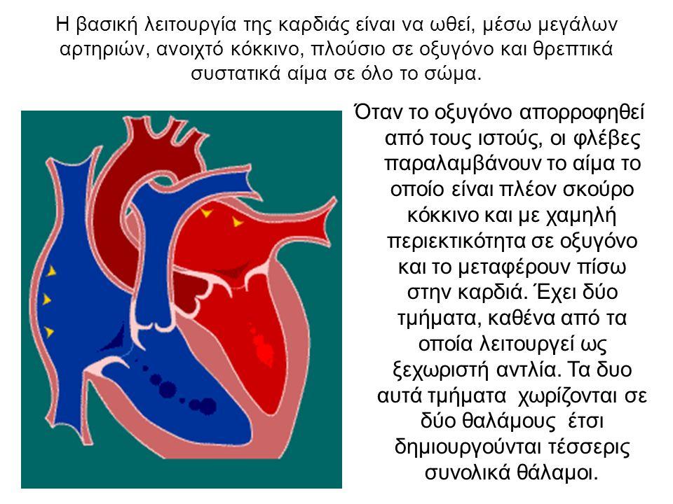 Η βασική λειτουργία της καρδιάς είναι να ωθεί, μέσω μεγάλων αρτηριών, ανοιχτό κόκκινο, πλούσιο σε οξυγόνο και θρεπτικά συστατικά αίμα σε όλο το σώμα.