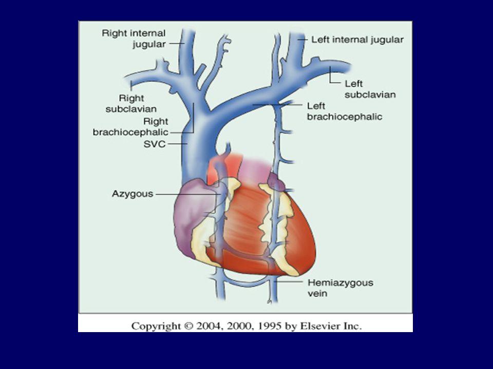 ΣΥΝΔΡΟΜΟ ΟΞΕΙΑΣ ΛΥΣΗΣ ΤΟΥ ΟΓΚΟΥ Χαρακτηρίζεται από μεταβολικές διαταραχές (υπερκαλιαιμία, υπερουριχαιμία, υπερφωσφαταιμία, υπασβεστιαιμία και μεταβολική οξέωση) Συνήθως σε υψηλής κακοήθειας νεοπλάσματα (λεμφώματα, οξείες λευχαιμίες, SCLC, Ca όρχεος) Συνήθως ιατρογενές σύνδρομο λόγω της ΧΜΘ ή ΑΚΘ