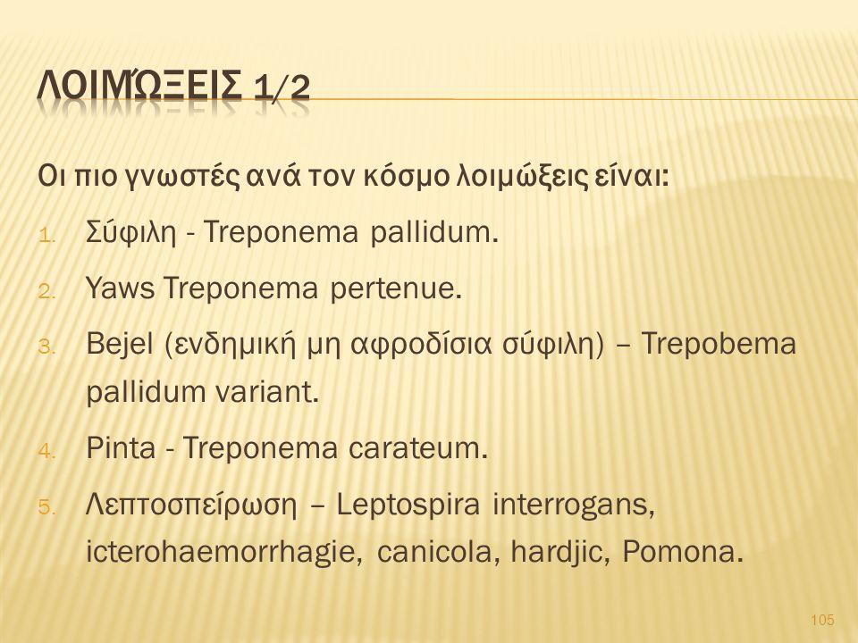 Οι πιο γνωστές ανά τον κόσμο λοιμώξεις είναι: 1. Σύφιλη - Treponema pallidum. 2. Yaws Treponema pertenue. 3. Bejel (ενδημική μη αφροδίσια σύφιλη) – Tr