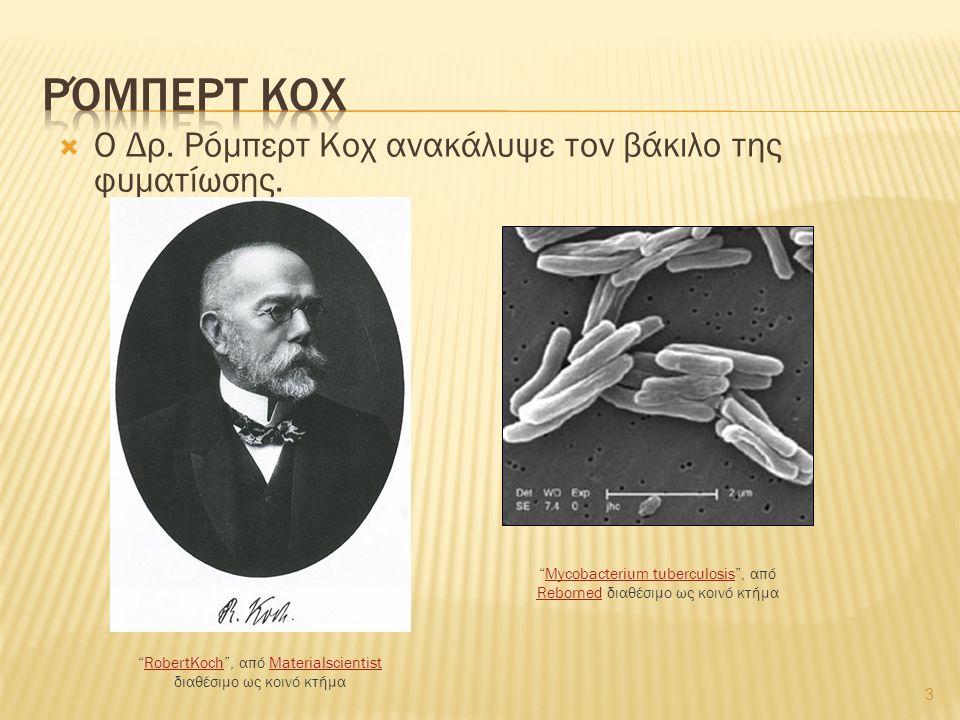 """ Ο Δρ. Ρόμπερτ Κοχ ανακάλυψε τον βάκιλο της φυματίωσης. 3 """"RobertKoch"""", από Materialscientist διαθέσιμο ως κοινό κτήμαRobertKochMaterialscientist """"My"""