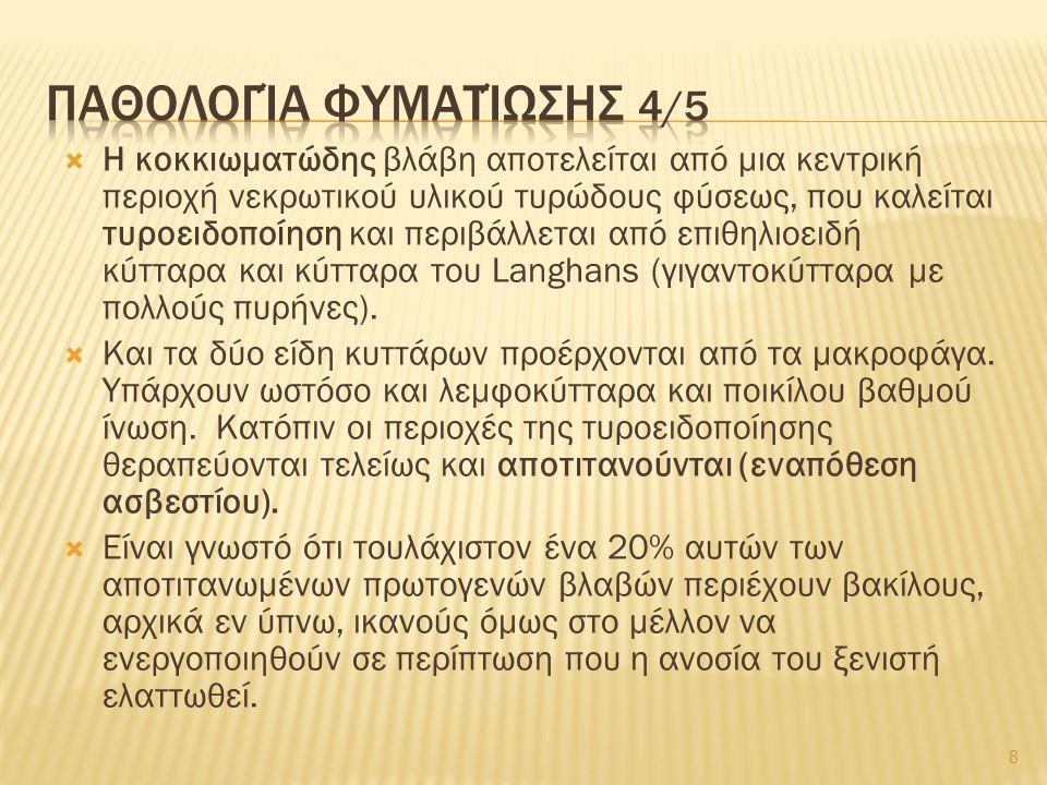 Λεπροματώδης λέπρα (συνέχεια) Συχνά προσβάλλονται οι βλεννογόνοι, οδηγώντας σε ρινική απόφραξη, λαρυγγίτιδα και βράγχος φωνής.