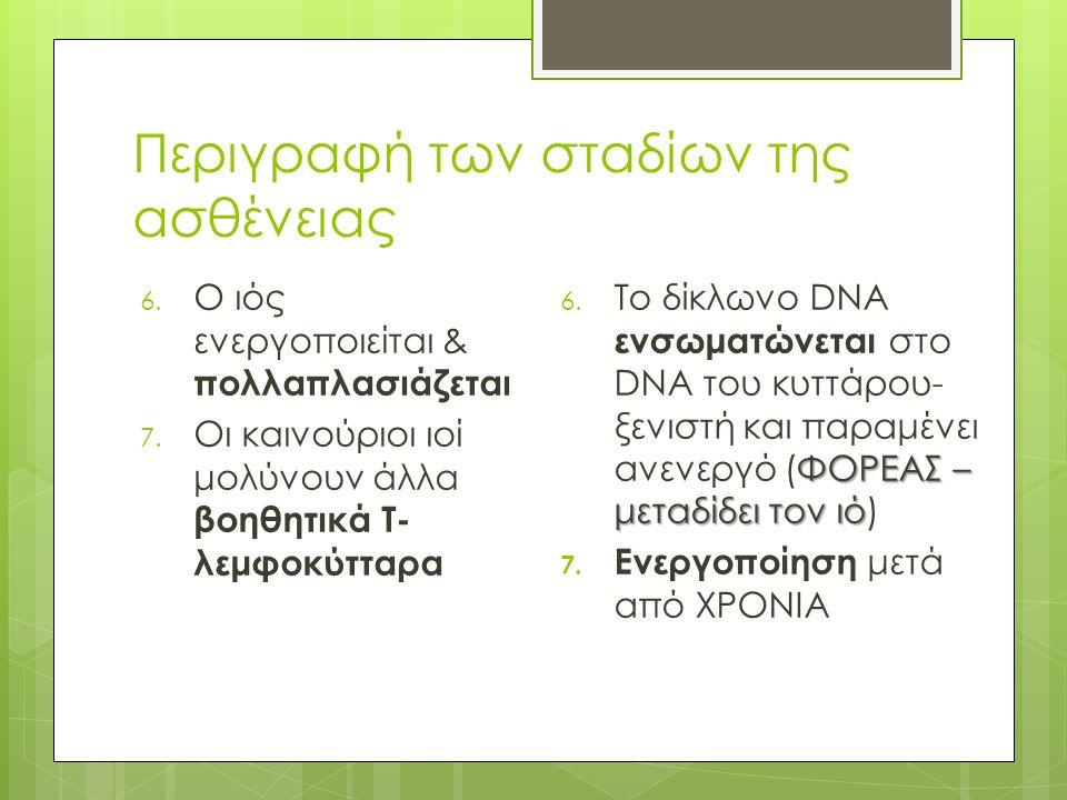 Περιγραφή των σταδίων της ασθένειας 6. Ο ιός ενεργοποιείται & πολλαπλασιάζεται 7.