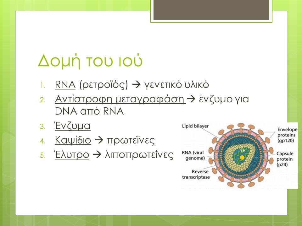 Δομή του ιού 1. RNA (ρετροϊός)  γενετικό υλικό 2.