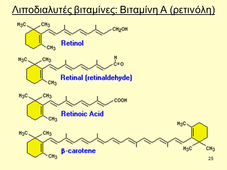 25 Λιποδιαλυτές βιταμίνες: Βιταμίνη Α (ρετινόλη)