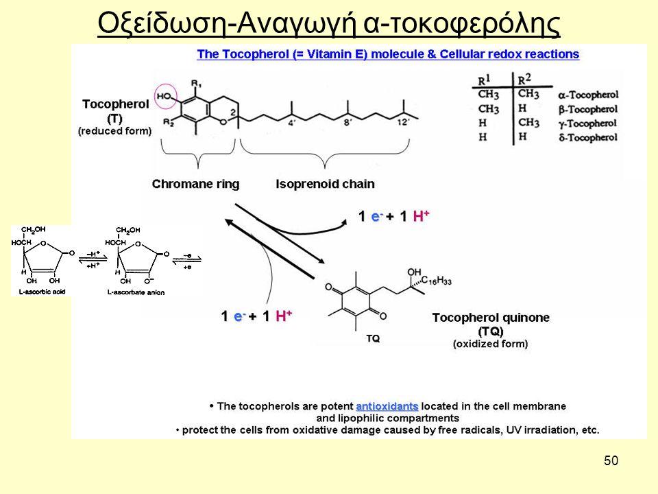50 Οξείδωση-Αναγωγή α-τοκοφερόλης