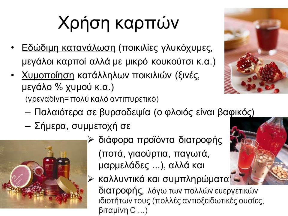 Χρήση καρπών Εδώδιμη κατανάλωση (ποικιλίες γλυκόχυμες, μεγάλοι καρποί αλλά με μικρό κουκούτσι κ.α.) Χυμοποίηση κατάλληλων ποικιλιών (ξινές, μεγάλο % χυμού κ.α.) (γρεναδίνη= πολύ καλό αντιπυρετικό) –Παλαιότερα σε βυρσοδεψία (ο φλοιός είναι βαφικός) –Σήμερα, συμμετοχή σε  διάφορα προϊόντα διατροφής (ποτά, γιαούρτια, παγωτά, μαρμελάδες...), αλλά και  καλλυντικά και συμπληρώματα διατροφής, λόγω των πολλών ευεργετικών ιδιοτήτων τους (πολλές αντιοξειδωτικές ουσίες, βιταμίνη C...)