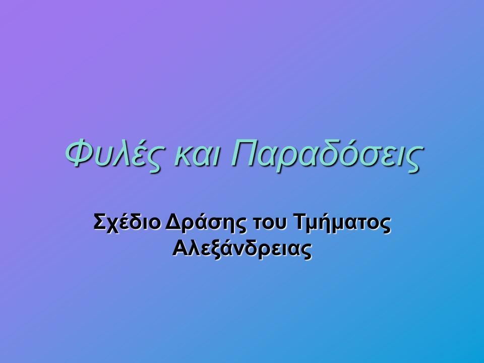 Φυλές και Παραδόσεις Σχέδιο Δράσης του Τμήματος Αλεξάνδρειας