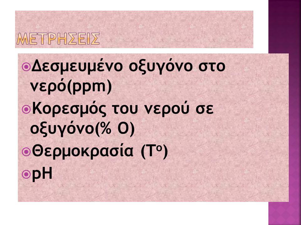  Oξύρυγχος : Εκτρεφεται στη Ρωσια.Απο αυτό το είδος έχουμε το χαβιάρι (θηλυκές γονάδες) σε ηλικία 5 η 8 ετών, ανάλογα με το είδος,για αυτό έχουμε αυξημένο κόστος εκτροφής.