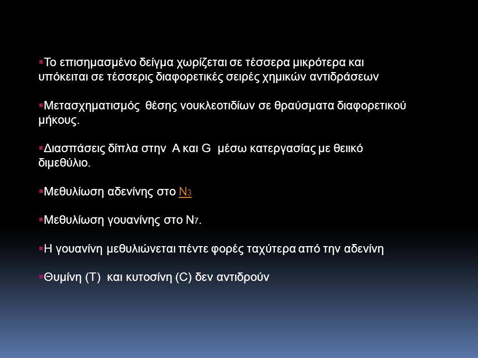 Χρήση 33 Ρ Πιο «αιχμηρές» ζώνες Εναλλακτική χρήση 35 S Παίρνει τη θέση ενός οξυγόνου από τη φωσφορική ομάδα και προκύπτει θειοφωσφορικό Μεγαλύτερος χρόνος ημίσειας ζωής (87 ημέρες) Μεγαλύτερη διάρκεια διατήρησης υποστρώματος «Αιχμηρές» ζώνες