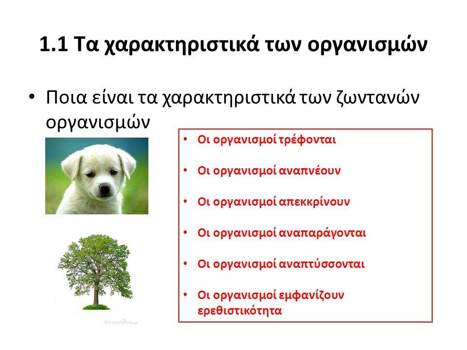 1.1 Τα χαρακτηριστικά των οργανισμών Ποια είναι τα χαρακτηριστικά των ζωντανών οργανισμών Οι οργανισμοί τρέφονται Οι οργανισμοί αναπνέουν Οι οργανισμο