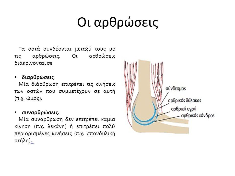 Οι αρθρώσεις Τα οστά συνδέονται μεταξύ τους με τις αρθρώσεις. Οι αρθρώσεις διακρίνονται σε διαρθρώσεις Μία διάρθρωση επιτρέπει τις κινήσεις των οστών