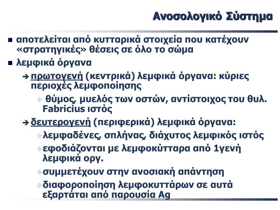 23/01/08 Μαθήματα Ειδικευόμενων IgM IgG IgM