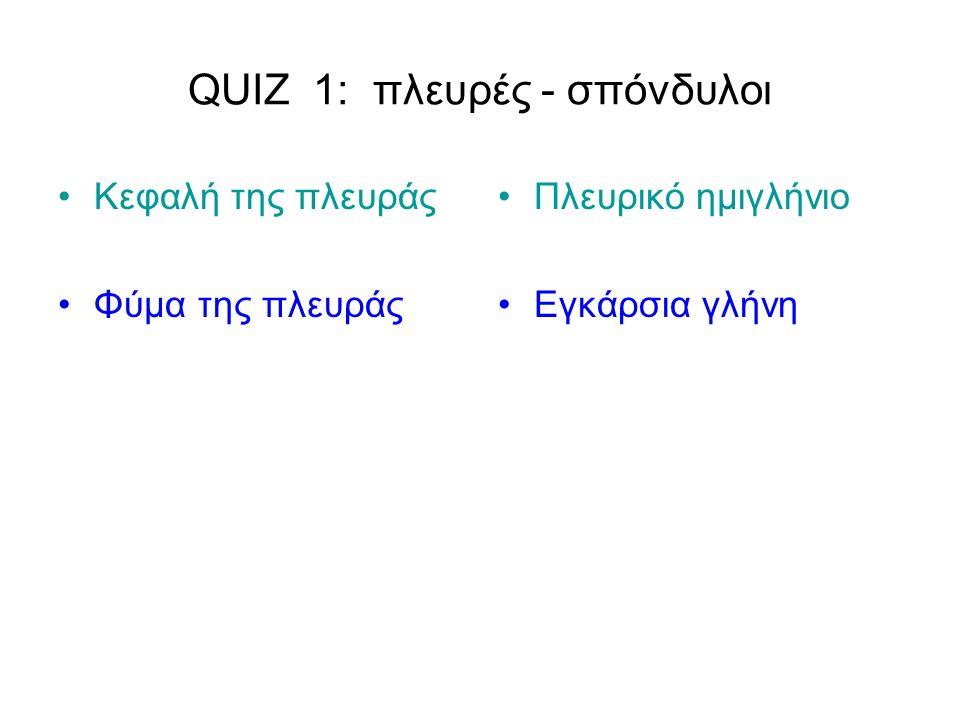 QUIZ 1: πλευρές - σπόνδυλοι Κεφαλή της πλευράς Φύμα της πλευράς Πλευρικό ημιγλήνιο Εγκάρσια γλήνη